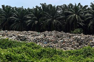 Recyclers Cringe as Southeast Asia Says It's Sick of the West's Trash